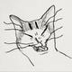Аватар пользователя OldZebra