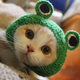 Аватар пользователя KOTYACHIY