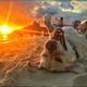 Аватар пользователя YaroslavLada123