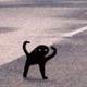 Аватар пользователя dostanvorobyshka