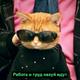 Аватар пользователя Putthiscookie2
