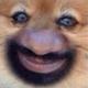 Аватар пользователя Prisbones