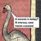 Аватар пользователя a.elyzarova