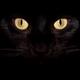 Аватар пользователя Krasofaks