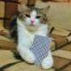 Аватар пользователя mumixam