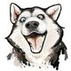 Аватар пользователя Mirex92