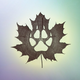 Аватар пользователя Maplefoxwood