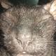 Аватар пользователя denchik2501