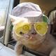 Аватар пользователя Paulvpm
