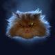 Аватар пользователя LovecatsHateyou