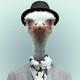 Аватар пользователя asukms