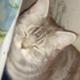 Аватар пользователя marineboy122