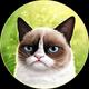 Аватар пользователя smuphyxa
