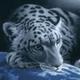 Аватар пользователя Mypppk