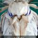 Аватар пользователя Najroynaggot