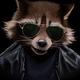 Аватар пользователя CoolRaccoon77
