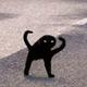 Аватар пользователя amarantha