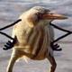 Аватар пользователя takblja