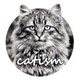 Аватар пользователя vk.catism