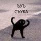 Аватар пользователя akarat