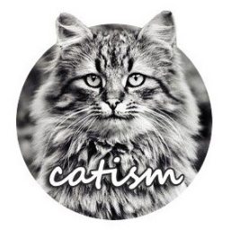 vk.catism