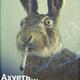 Аватар пользователя aleks.trumle