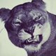 Аватар пользователя Leopold30