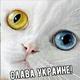Аватар пользователя ailv