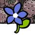plantandrun