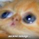 Аватар пользователя HysterioN