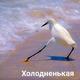 Аватар пользователя PrSky