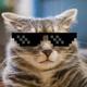 Аватар пользователя Smeshny