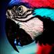 Аватар пользователя V0r0n666