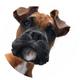 Аватар пользователя Smska252