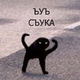 Аватар пользователя SpaceSingularity