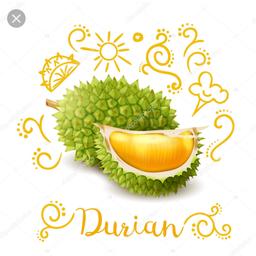 ledi.durian