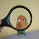 Аватар пользователя stanley004