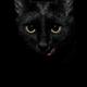 Аватар пользователя Durylend