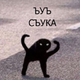 Аватар пользователя vitalpikabu