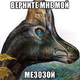 Аватар пользователя doctorrussia