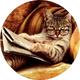 Аватар пользователя E1ephant