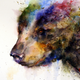 Аватар пользователя WatercolourBaloo