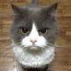 Аватар пользователя NickGyver