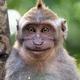 Аватар пользователя creyz