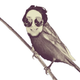 Аватар пользователя SuselMan