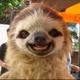 Аватар пользователя Iluezy