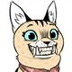 Аватар пользователя rogabush
