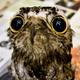 Аватар пользователя Valsons