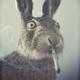 Аватар пользователя Delozetto