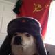 Аватар пользователя Oberowa